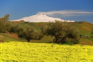 "12 DAYS SICILY SMALL GROUP TOUR: ""A LAND OF CONTRASTS"""