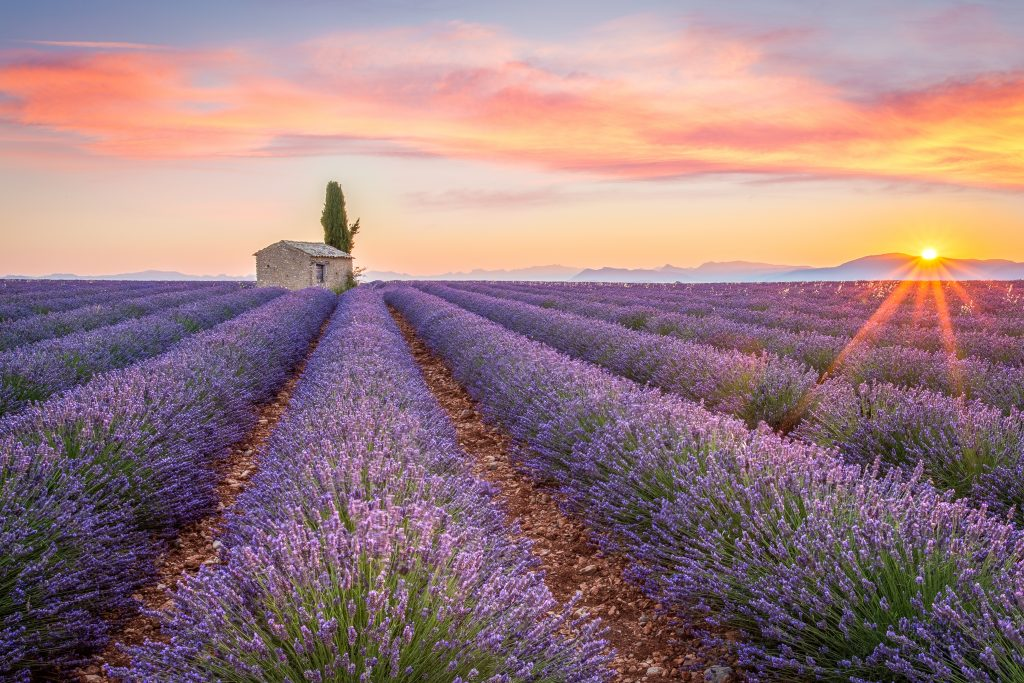 "9 DAYS PROVENCE SMALL GROUP TOUR: ""THE ESSENCE OF PROVENCE"""