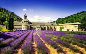"9 DAYS PROVENCE SMALL GROUP TOUR: ""THE ESSENCE OF PROVENCE & NICE"""